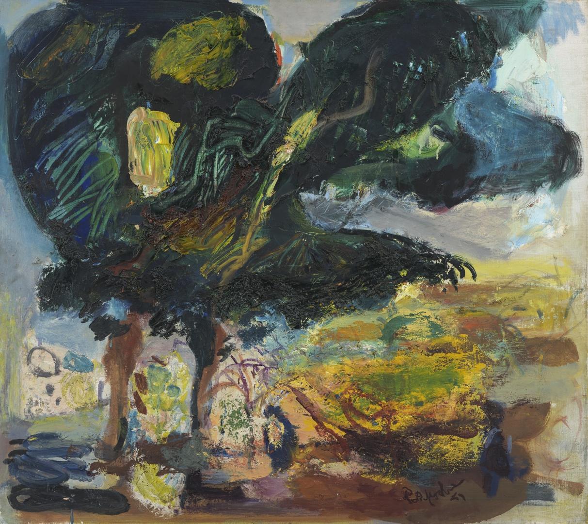 Grote bomen