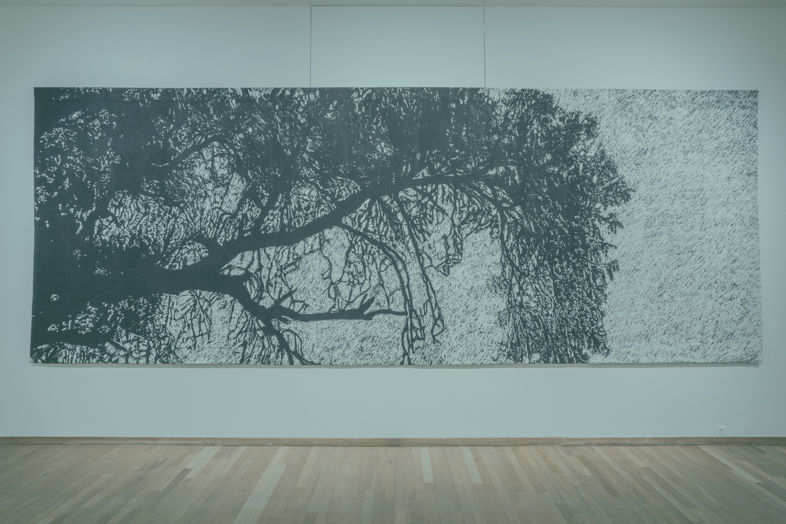 Yagul Tapestries, Jan Hendrix Tierra Firme_.jpg